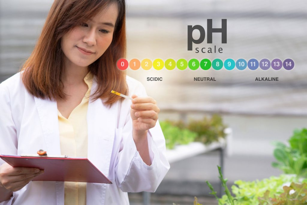 How To Adjust The PH Levels When Growing Marijuana