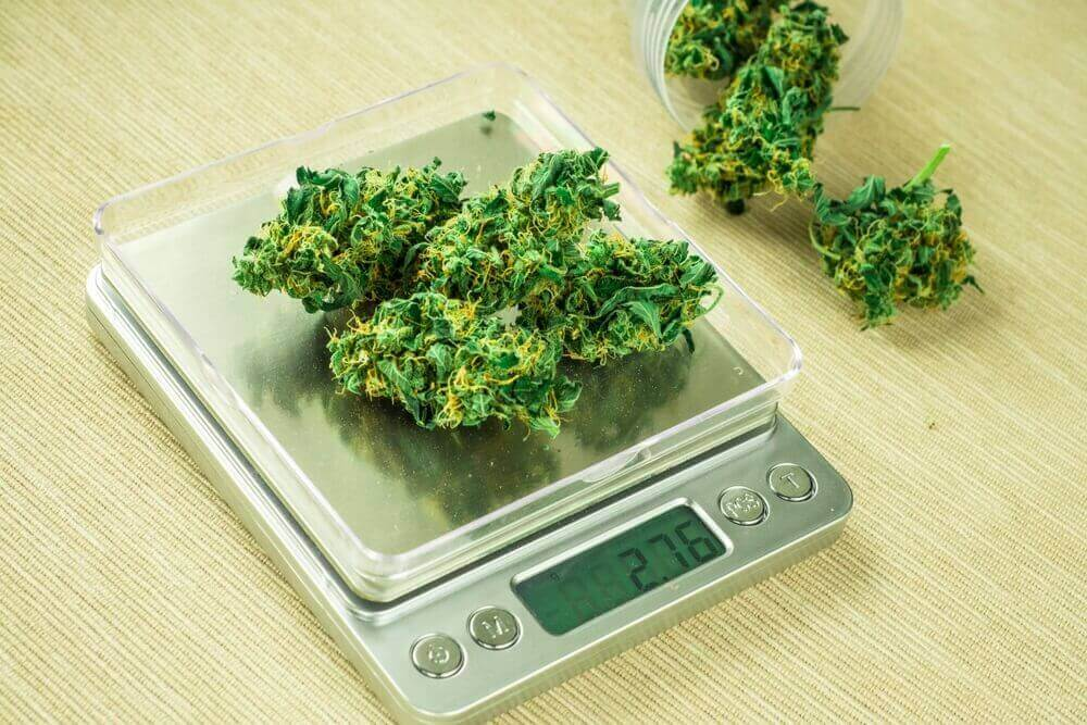 A Comprehensive Guide to Weed Measurements