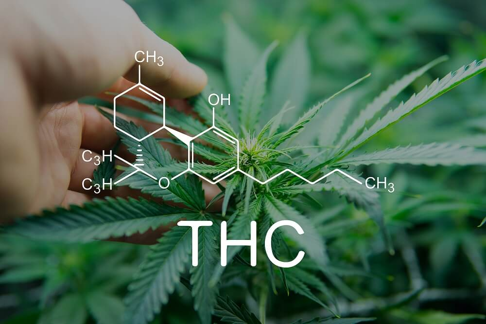 How Long Does THC Stay in Saliva