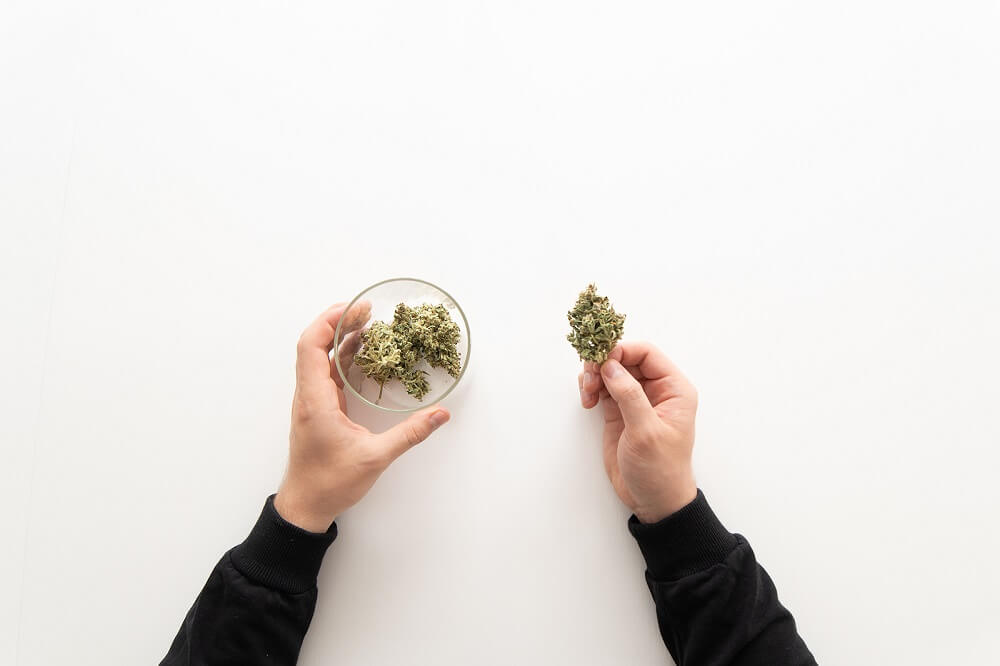 collective mean for weed