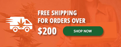 buy cannabis free shipping