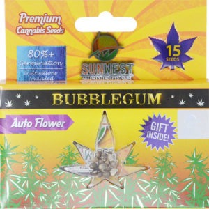 bubblegum marijuana seeds