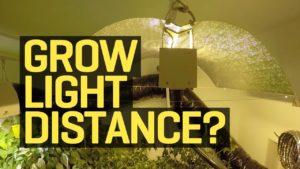 marijuana growing lights