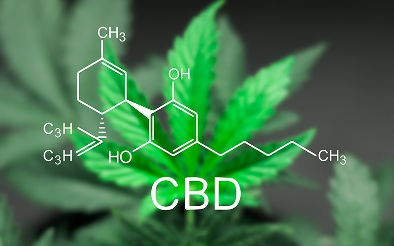 benefits cbd cannabis