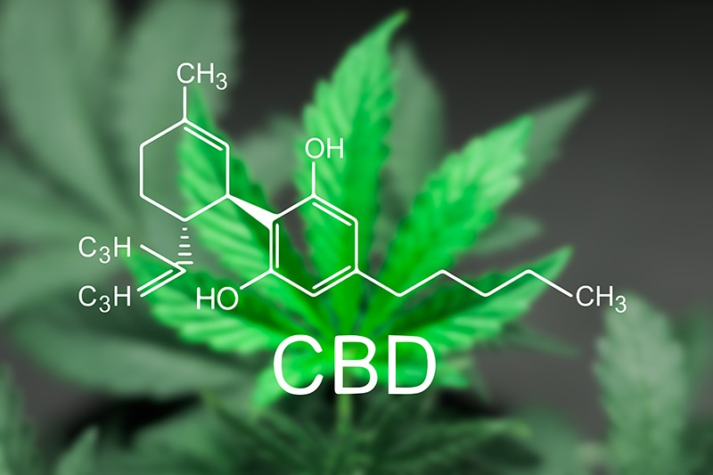 Benefits of CBD in Cannabis