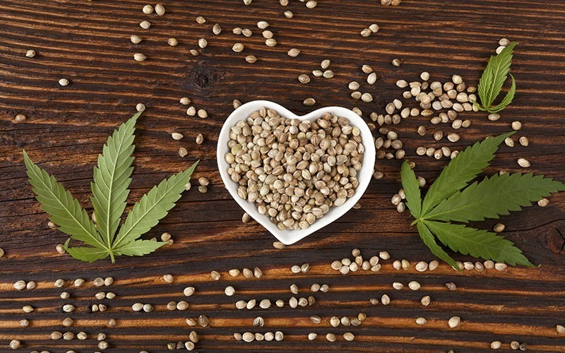 cbd cannabis seeds
