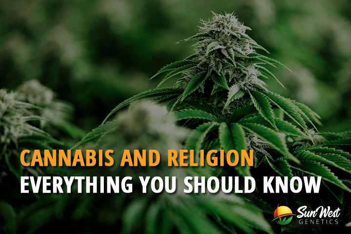 Cannabis and Religion: Everything You Should Know