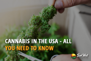 Cannabis in the USA – All You Need to Know