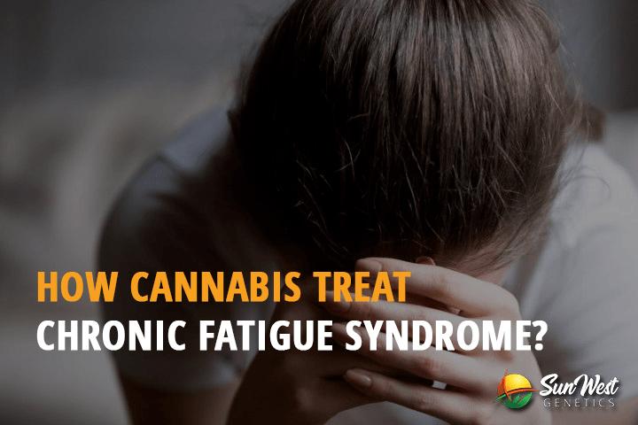How Cannabis Treat Chronic Fatigue Syndrome?
