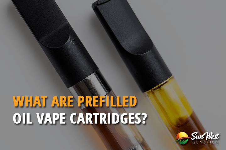 What are Prefilled Oil Vape Cartridges?