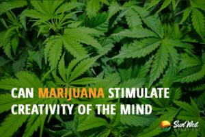 marijuana stimulation